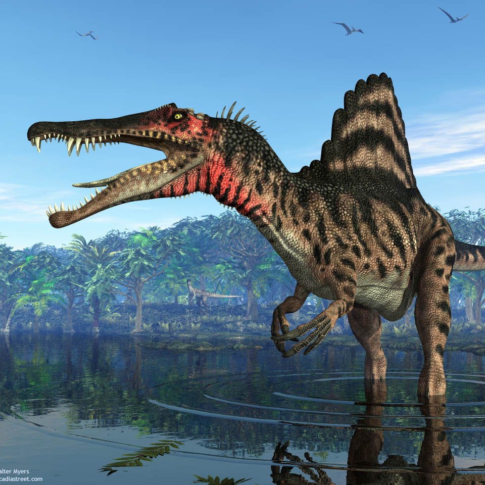 Spinosaurus (from History of Earth - Mesozoic Era)